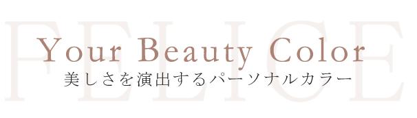 美しさを演出する